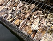 浙江石笼网镀锌电焊网